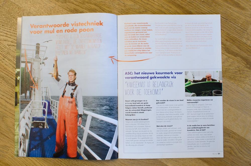 Vis-magazine_spread